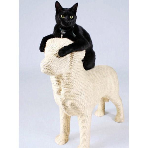 griffoir chat en forme de chien