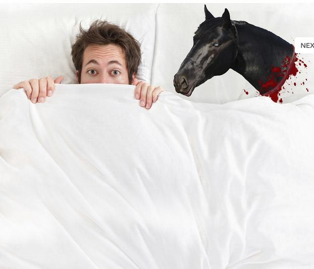 oreiller-tete-cheval