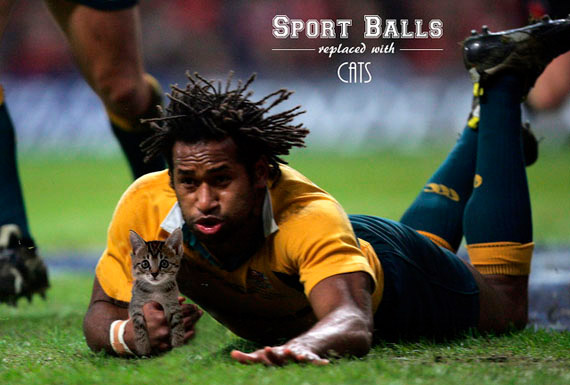 rugby-chat