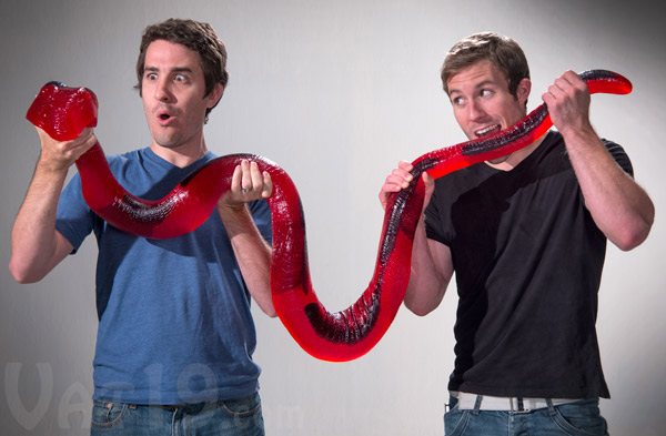 bonbon-serpent-gelifie-2