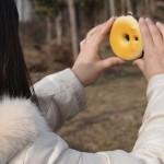 Le donut caméra