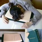 Le dictionnaire oreiller