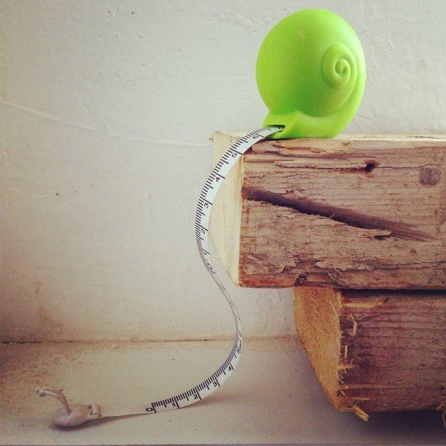 metre-escargot