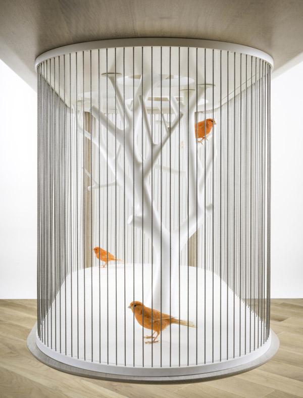 cage-oiseaux-3