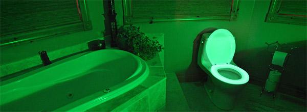 wc-lumineux