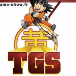 Toulouse Games Show 2013 #1