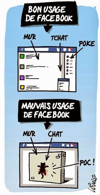mur-chat