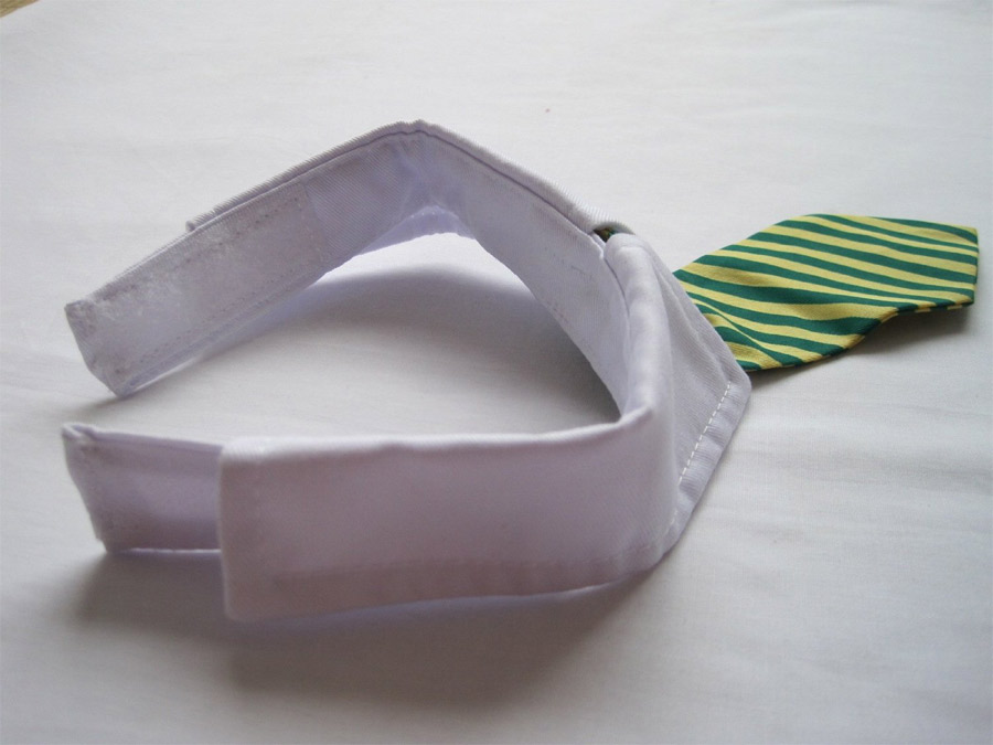 cravate-chat-4