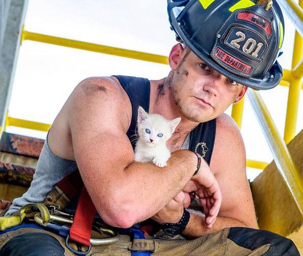 Le calendrier des pompiers sexy avec des chiens/chats