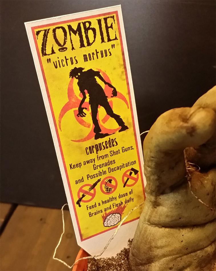 Faire pousser un zombie dans un pot