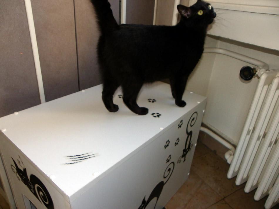 J'ai camouflé la litière de mon chat