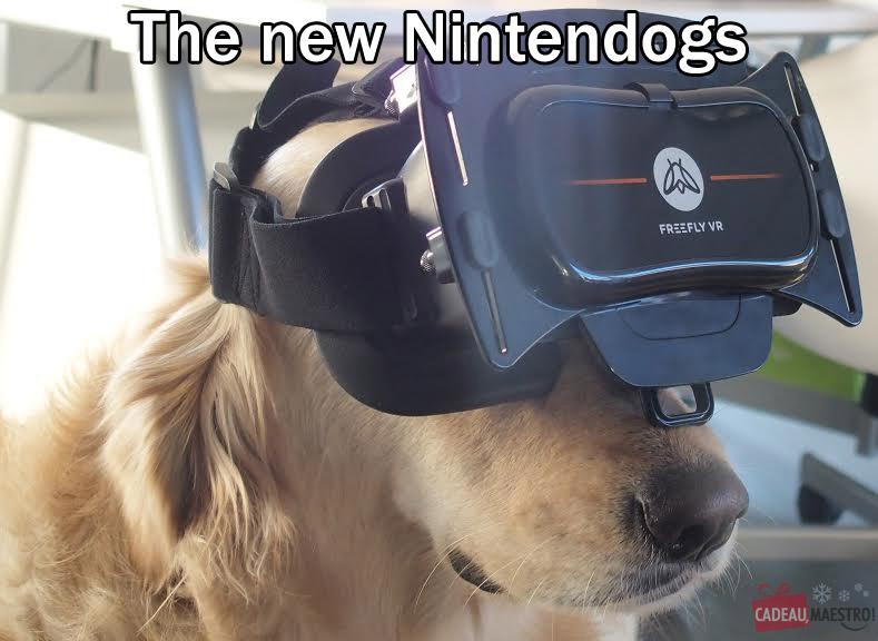 Un chien joue avec un masque de réalité virtuelle