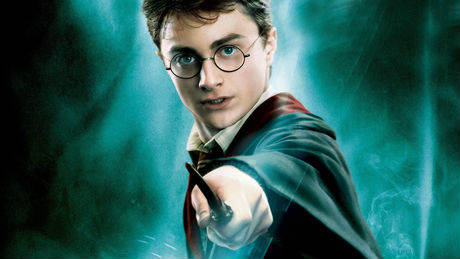 harry-potter-et-sa-baguette_