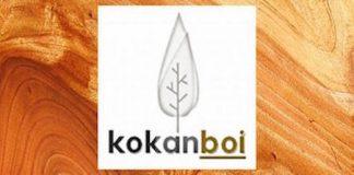 logo kokanboi