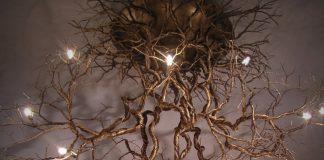 Plafonnier racines