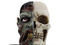 Serre livres tête de zombie