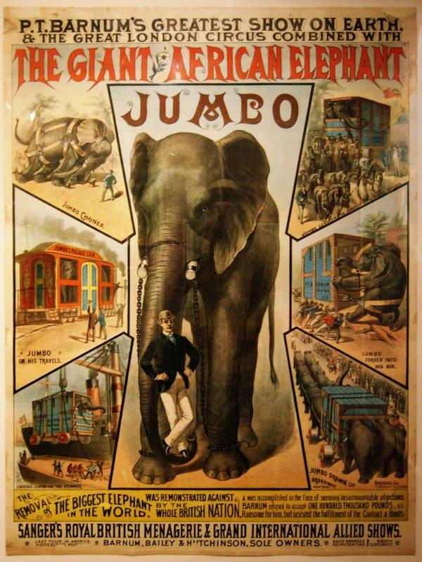 L'histoire vraie de Dumbo l'éléphant